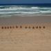 Photo of The Education Abroad Network (TEAN): Gold Coast - Bond University