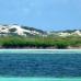 Photo of SFS: Turks & Caicos - Marine Resource Management Studies