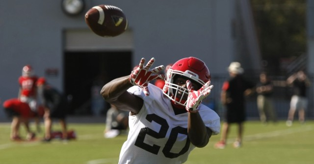 UGA free safety Quincy Mauger try's to pull in a pass during Tuesday's practice. The junior has already tallied 12 tackles for the Bulldogs through the first two games. (Joshua L. Jones/ Special)
