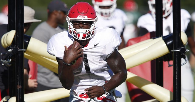 UGA tailback Sony Michel (1) finishes a drill at Tuesday's practice. (Joshua L. Jones/Special)