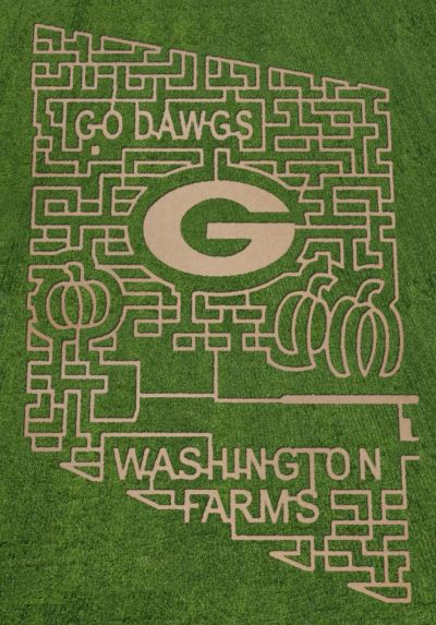 This year's Washington Farms' corn maze is a tribute to the Bulldogs. (via washingtonfarms.net)