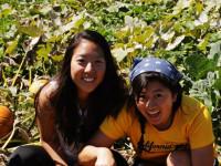 Urban Health in LA fundraiser