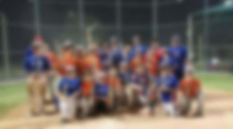 Online Fundraiser for SCORPIONS Baseball team by Lindsey Sturlin   Piggybackr