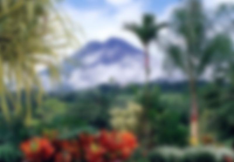 Online Fundraiser for Spanish Trip 2018 by Royal Weber | Piggybackr