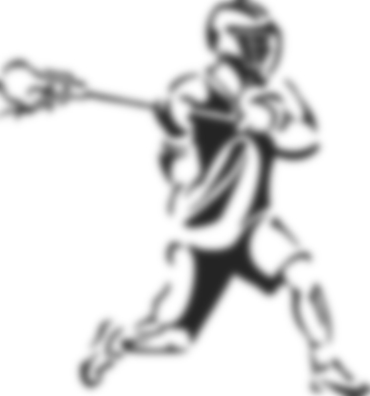 Online Fundraiser for Ithaca Lacrosse by David Voigt | Piggybackr
