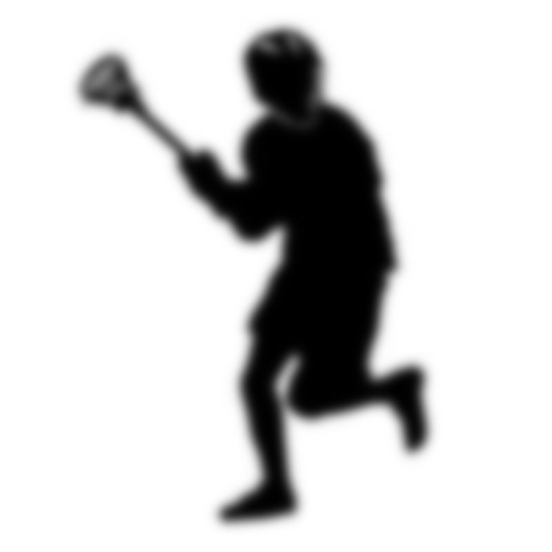 Online Fundraiser for Ithaca Lacrosse by rowan drake | Piggybackr