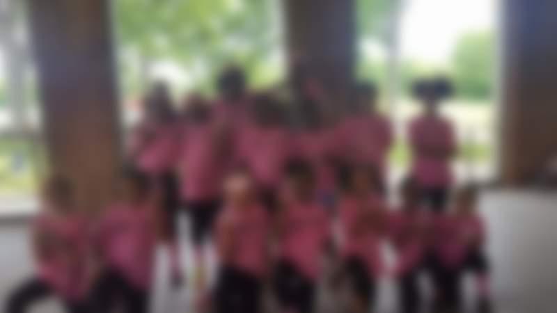 Online Fundraiser for Louisville Pink Sox by Doneiska Board   Piggybackr