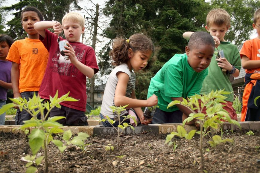 Green Roots fundraiser