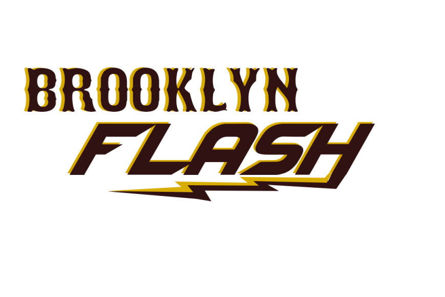 Brooklyn Flash Travel Baseball Team fundraiser